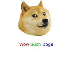 Wow Such Dog Image! Photographic Print