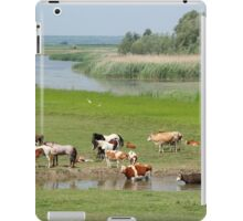 cows and horses on river iPad Case/Skin