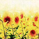 *Sunflower Field Impressions* by DeeZ (D L Honeycutt)