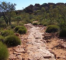 Path to help the many visitors to Kings Canyon. N. T. Aust. by Rita Blom