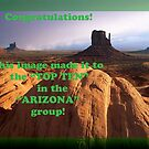 Top Ten Banner- Arizona group by Ann Warrenton