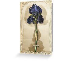 Night Iris Greeting Card