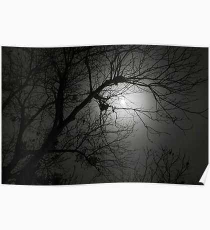 Spooky Moon Poster