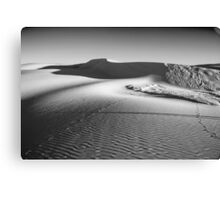 Moving Sands Canvas Print