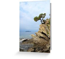 pine tree on a rock above the sea Greeting Card