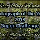 NPAD Banner - Photo of Year Winner by Celeste Mookherjee