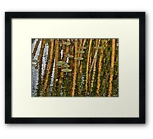 Orange Bamboo Abstract, Reflection on Water Framed Print
