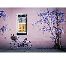 Wall Art Photographic Print
