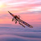 Royal Flying Corps Bleriot XI-2 iPad/iPhone/Samsung cases by Dennis Melling