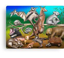 Australian Marsupials Canvas Print