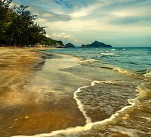 Tropical Waves by Adrian Evans