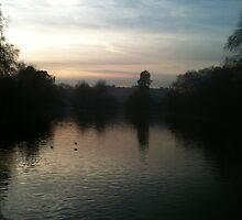 St Jame's Park looking towards Buckingham Palace by Pontvert