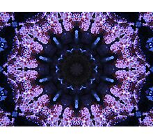 Corala Blue Photographic Print