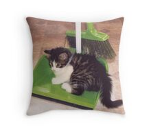 Clean Sweep Throw Pillow