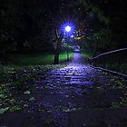A rainy late October Night, Brinkburn Denes by Ian Alex Blease