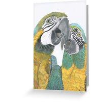 Kissing Macaws Greeting Card
