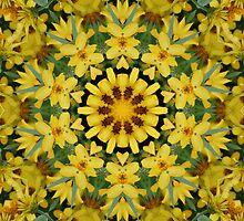 Sun Flower Delight by echoesofheaven