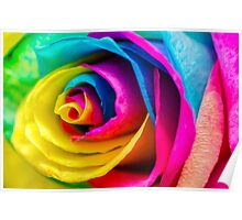 Poetic Colorful Rose Poster