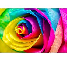 Poetic Colorful Rose Photographic Print