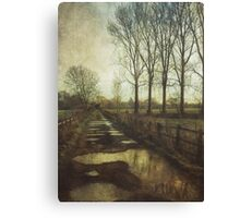 Walking the Bridleway Canvas Print