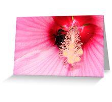 Bumble Bee Buried Greeting Card