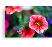 Red Million Bells Canvas Print