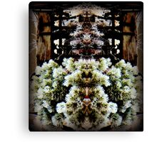 HIDDEN MONKEY  Canvas Print