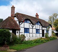 A Picturesque Cottage at Upper Farringdon  by hootonles