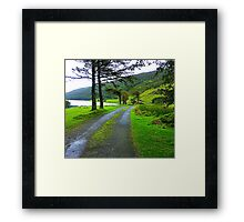 The Path By The Lake Framed Print