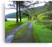 The Path By The Lake Metal Print