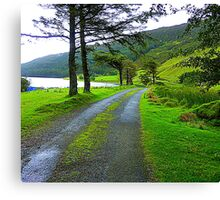 The Path By The Lake Canvas Print