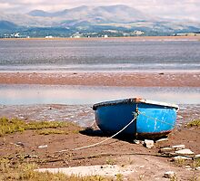 Boat on South Lakeland Shore by Sue Knowles