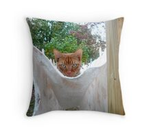 Toby's Clothesline Hammock Throw Pillow