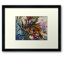 Solar Fred the Fish  Framed Print