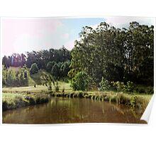 Canal inlet, Tasmania Arboretum Poster