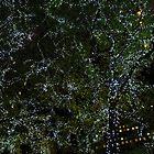 Rockerfeller Centre Trees by jennisney