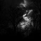 Overcast Afternoon by ReidOriginals