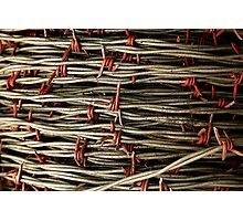 """""""Wired"""" Photographic Print"""