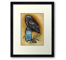 owl with mason jar and spruce twig, cascadia Framed Print