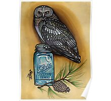 owl with mason jar and spruce twig, cascadia Poster