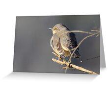Ode to a Mockingbird  Greeting Card