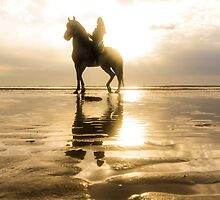 Sunset horse riding by Quentin Jarc