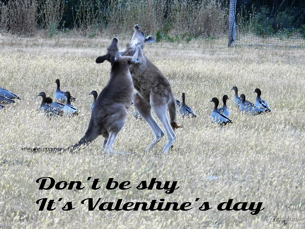 Valentine's Day fun - Grampians National Park, Vic by EdsMum