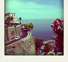 Sorrento - Amalfi Coast - Italy by anth0888