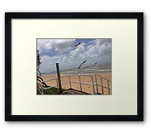 Birds at the Beach, Redcliffe Australia Framed Print