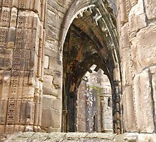 Elgin Arches (2) by kalaryder
