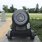 Cannon Face - Beware! by Vicki Childs