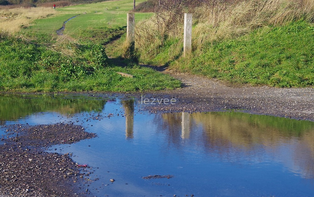 A Big Puddle by lezvee