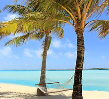 Hammock - Palm Trees - Bora Bora by Honor Kyne