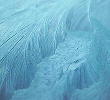 Frozen V by Sarah Cowan